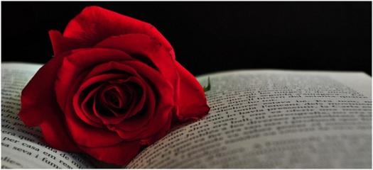 23 de abril Día internacional del libro Diada de Sant Jordi